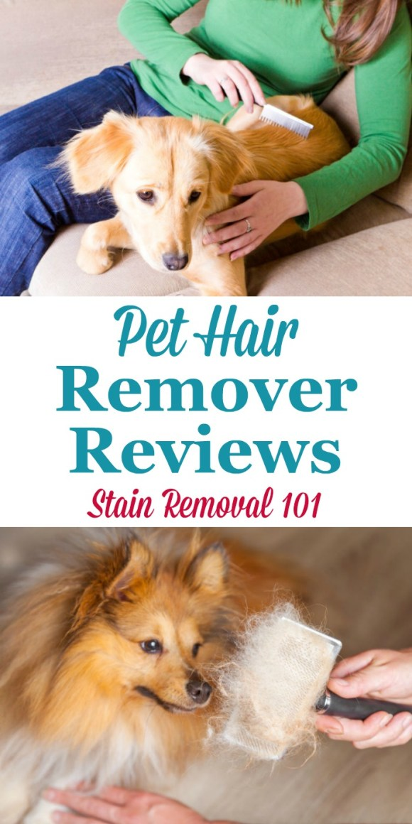 Pet Hair Removers Reviews: Which Products Work Best?
