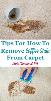 Tips For How To Remove Coffee Stain From Carpet When You