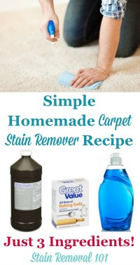 Homemade Carpet Stain Remover Recipe: Simple & No Scrub