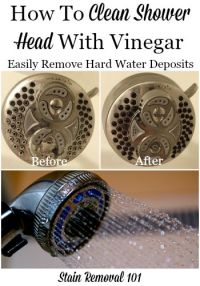 How To Clean Clogged Shower Head - Home Design