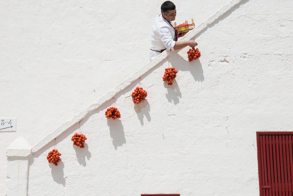 Chef hangs out tomatoes on white walls of Puglia masseria farmhouse hotel restaurant