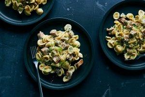 Orecchiette With Fennel and Sausage Recipe