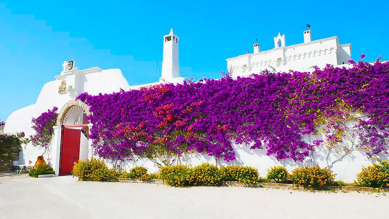 Best Masseria Hotels In Puglia, Italy