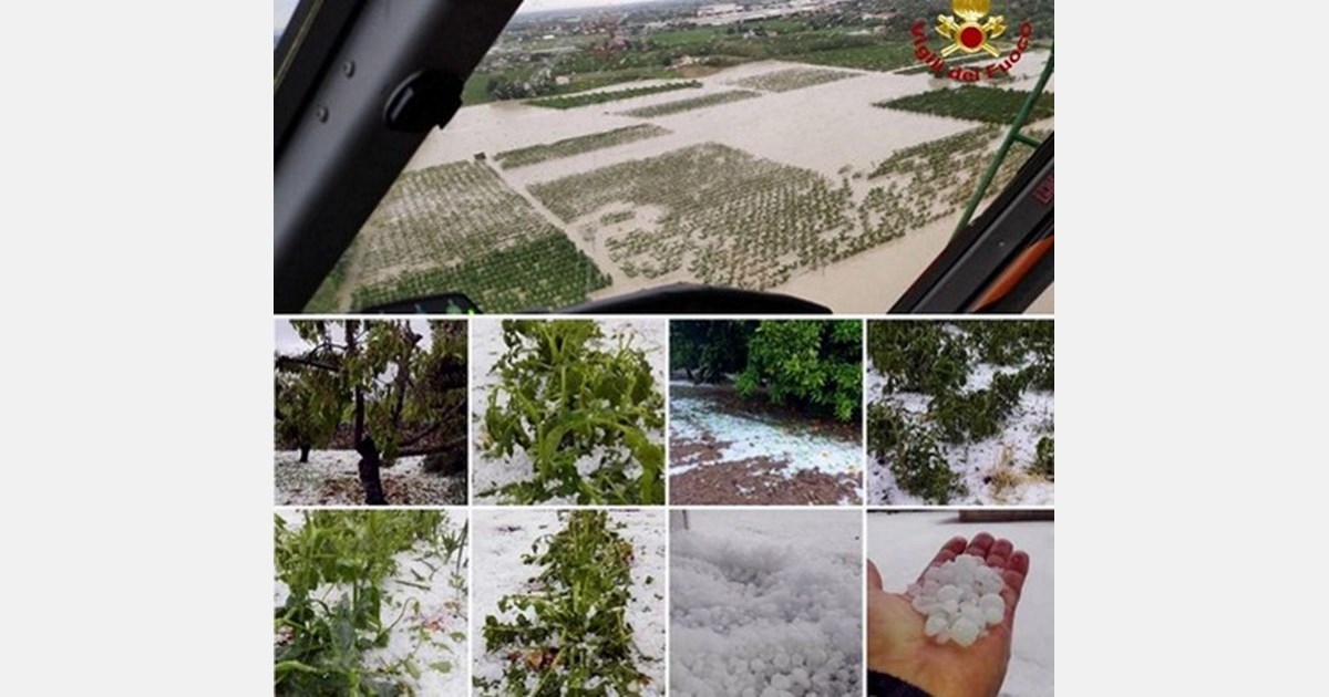 floods, hail and bad weather affect fruits and vegetables