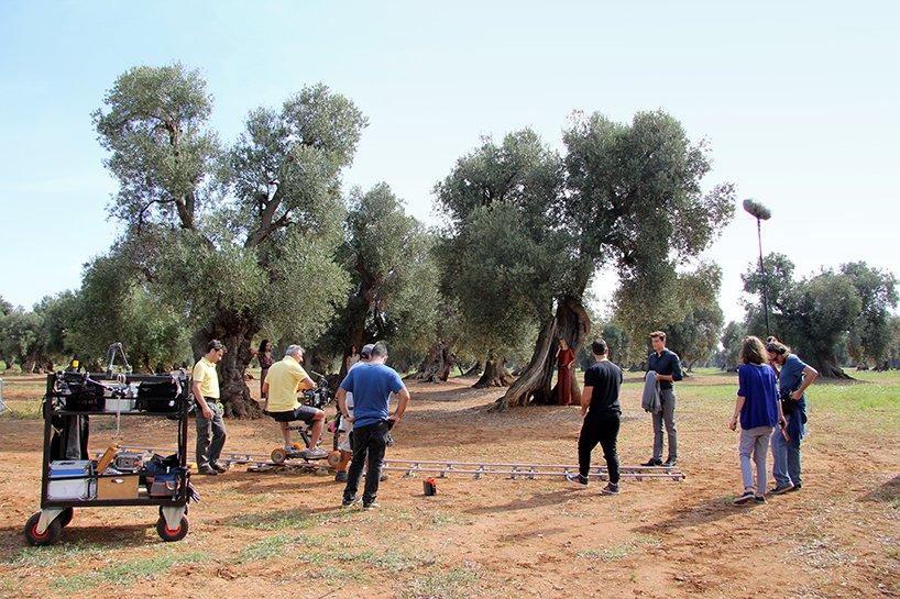 natuzzi behind the scenes a summer dream puglia designboom