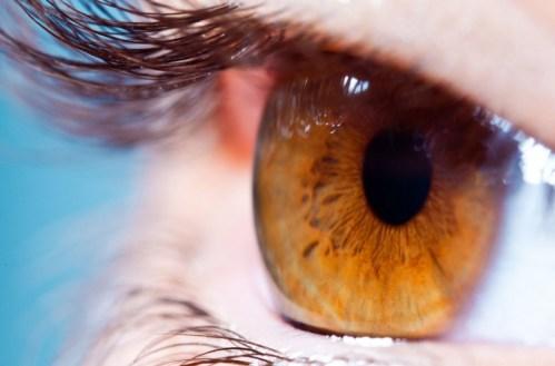 oči, nejdůležitější základ