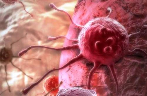 anti-kancerogenní, protirakovinné