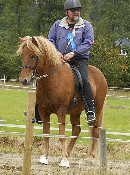 Losti från Lysegården f. 2008. Valack e Vadall frá Varmalaek u Raska (Hvót) frá Dyrfinnusstödum. Fux med ljus man. Losti är en mycket vacker unghäst. En kopia av sin helbror Laufi! Losti är en underbar ridhäst, mycket bra 5-gångare. Han rids endast av Eirikur.
