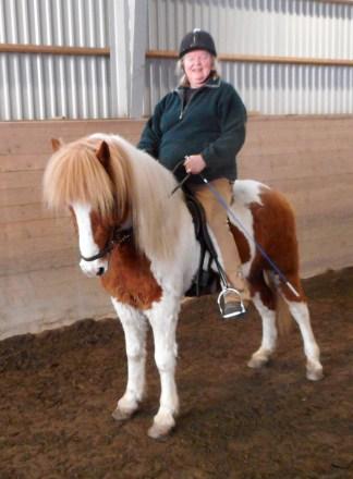 Marius frá Laekjamóti f. 2008. Valack, rödskäck med bläs. e. Kvaran frá Laekjamóti u. Thota frá Laekjamóti. Marius är Lenas och Eiríkurs privata häst. Vi tror att han efter Eiríkurs träning kommer att bli en mycket duktig femgångshäst.