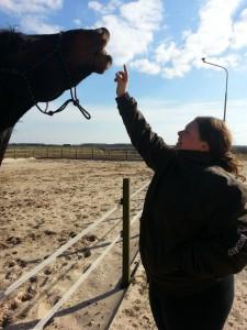 Linda met KWPN paard Semper-Fi terwijl ze de vrijheidsdressuur oefening Flemen doen