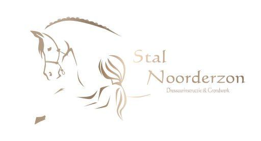 Logo Stal Noorderzon, meisje met paard