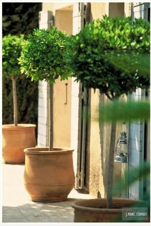 jardin-St-Remy-de-Provence_photographe hotel chambre d hote Avignon Provence