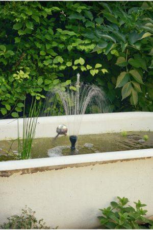 jardin_DSC_7244_photographe hotel chambre d hote Avignon Provence