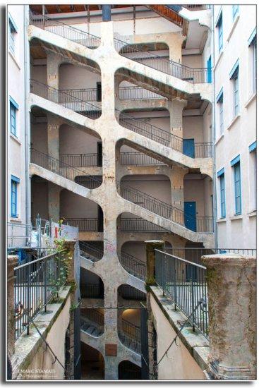 La cour des voraces. Lyon photographe JMarc Stamati