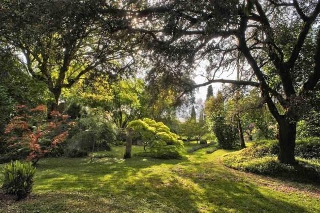 Giardino di Ninfa all'ombra di alberi ad alto fusto di giorno