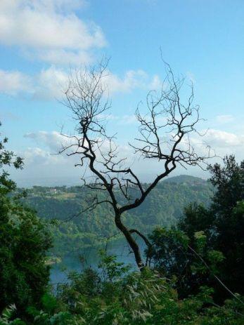 Gite fuori porta vicino Roma, Nemi e la vista sul lago omonimo