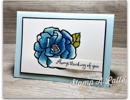 Brusho Shimmery Rose by Leonie Schroder Independent Stampin' Up! Demonstrator Australia
