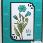 ButterflyBasics