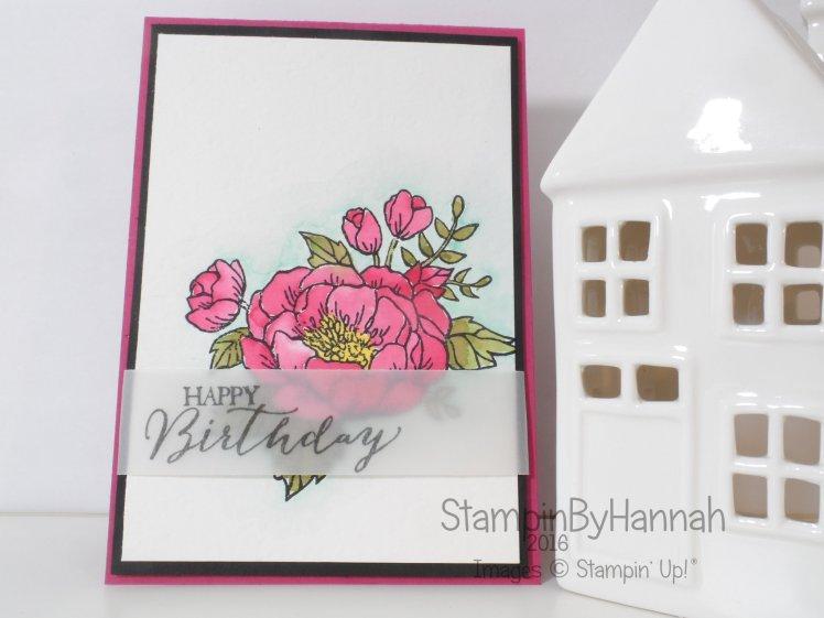Stampin' Up! UK Watercolour birthday blooms