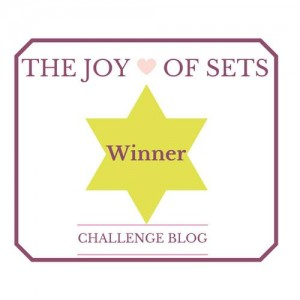 Joy of Sets Winner