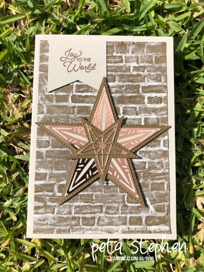 #stampin_cat #ctc253 #somanystars #puffpaint #stampinup