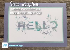 Stampin' Cat Floral Statements