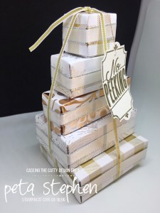 Stampin' Cat CTC155 Year of Cheer