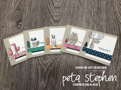 Stampin' Cat CTC177 Pick a Pattern 2016-2018 In Colours