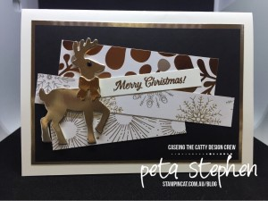 #Stampin' Cat #CTC151 #Year of Cheer #Stampin' Up