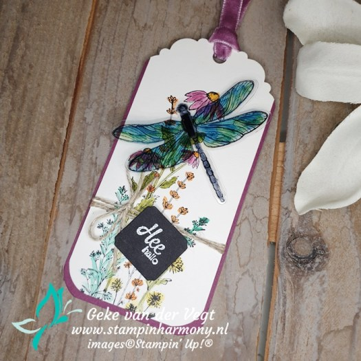 Dragonfly Garden labels