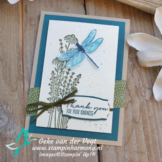 Dragonfly Garden thank you kaart