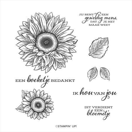 bijzondere zonnebloemen, stampin up, stampin treasure, celebrate sunflower