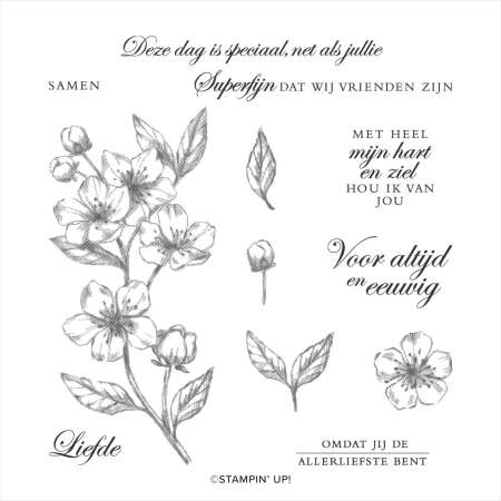 nieuwe bloesems, forever blossoms, stampin up, stampin treasure, cherry blossoms, kersen, bloesem