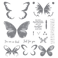 Watercolor Wings Photopolymer Stamp Set by Stampin' Up!