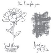 You've Got This Clear-Mount Stamp Set