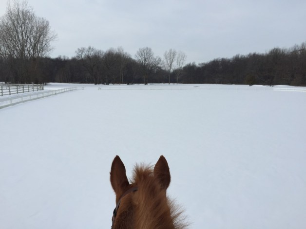 Walking through one of the outdoor rings last weekend in the snow.