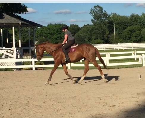 Tack setup in action earlier this week