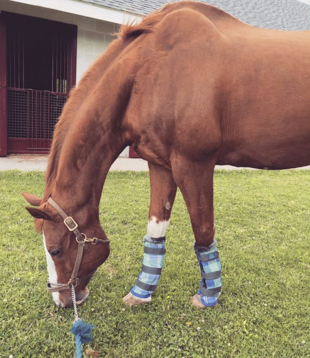 Rocking his new fly wraps