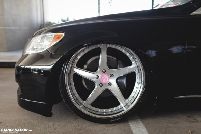 WekFest Hawaii Photo Coverage (41)