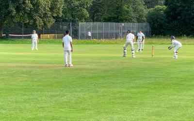 Sunday's Cricket