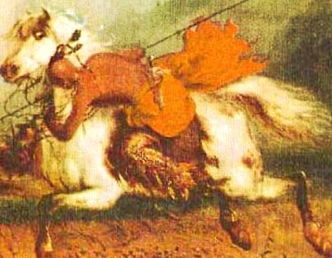 camanche-riding-technique