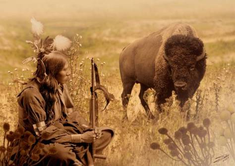 native-american-sioux-and-bison_art