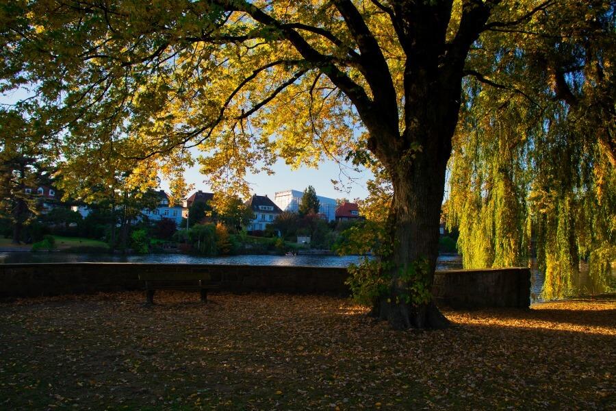 Hamburg vs. Berlijn: parken