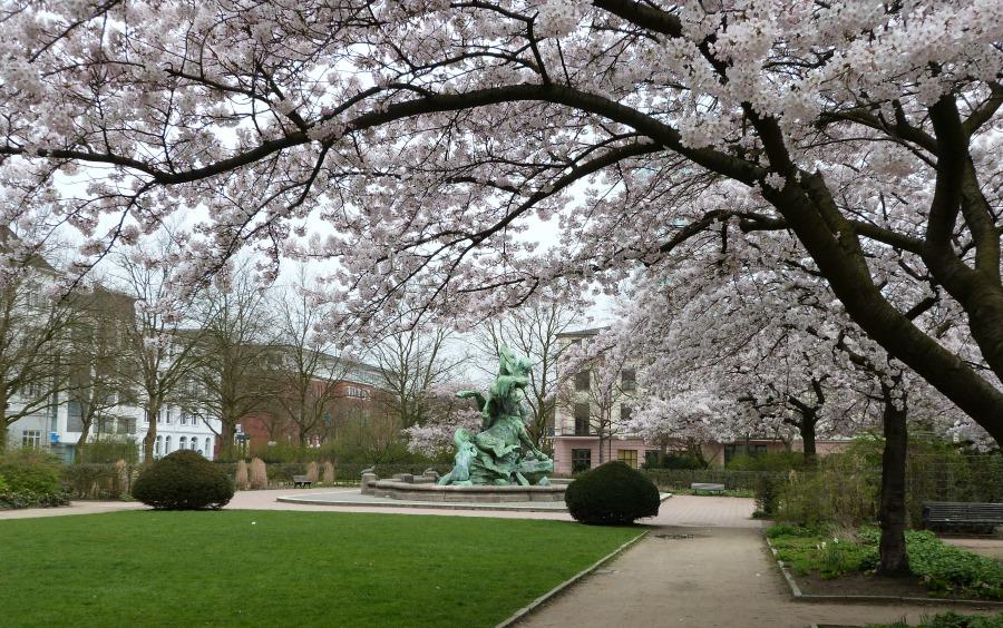 Hamburg in de lente - naar het park