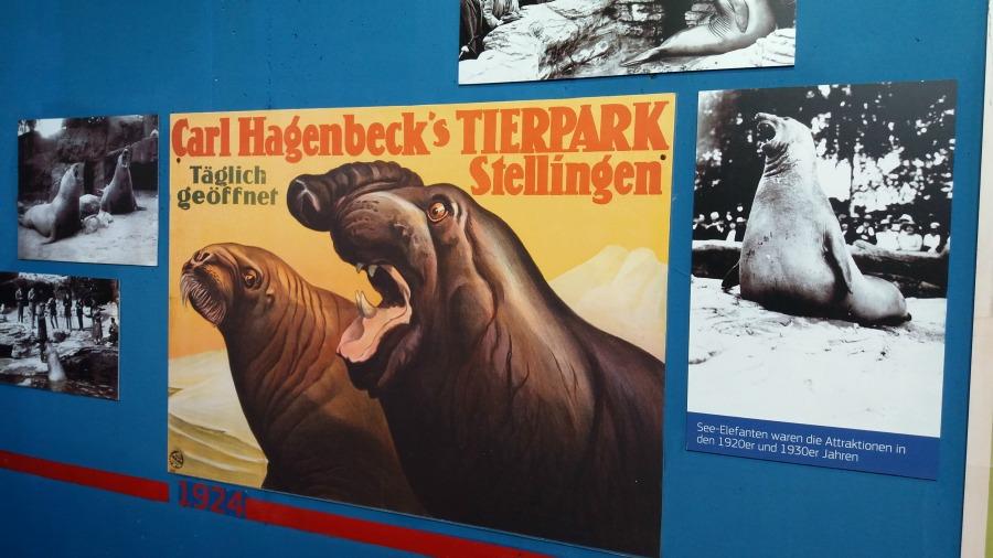 m20160919143016_standort-hamburg_tierpark-hagenbeck