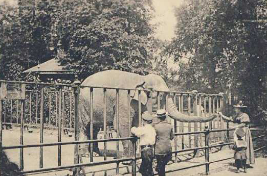 tierpark-hagenbeck-rond-1900