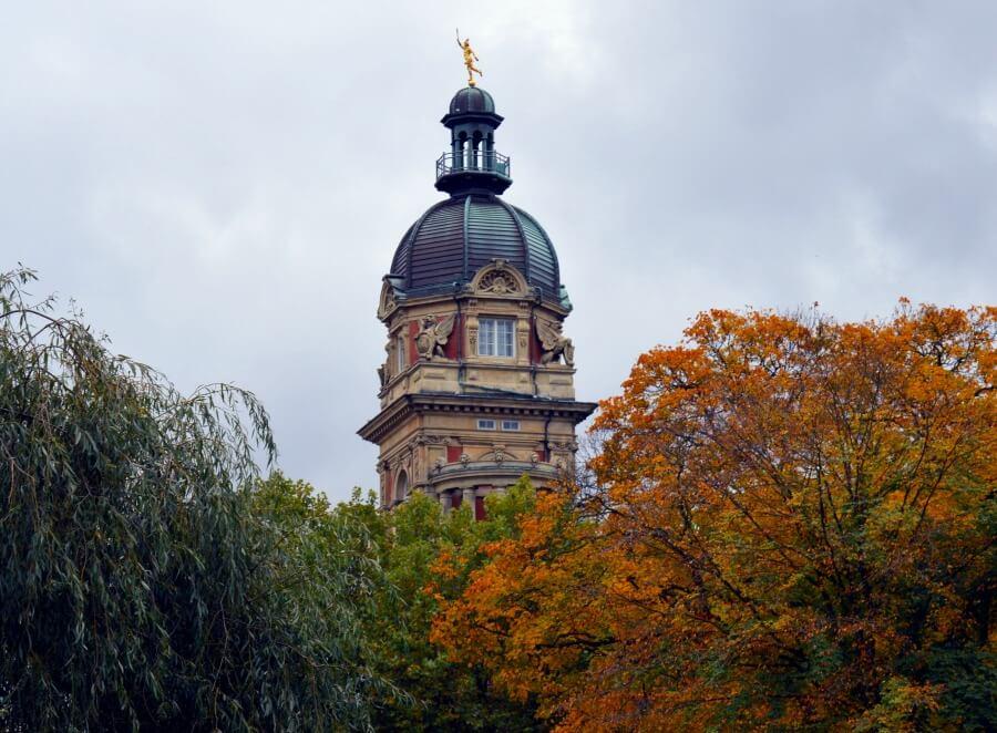 Herfstfotografie in Hamburg