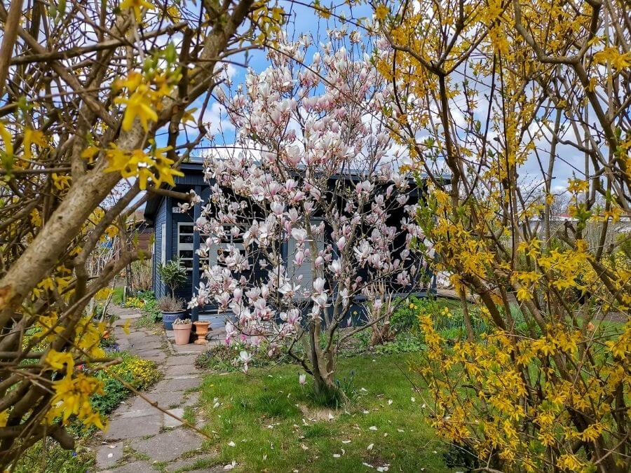 Lente in de Kleingartenverein