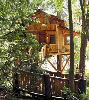 Standout Treehouse Design    Out On A Limb