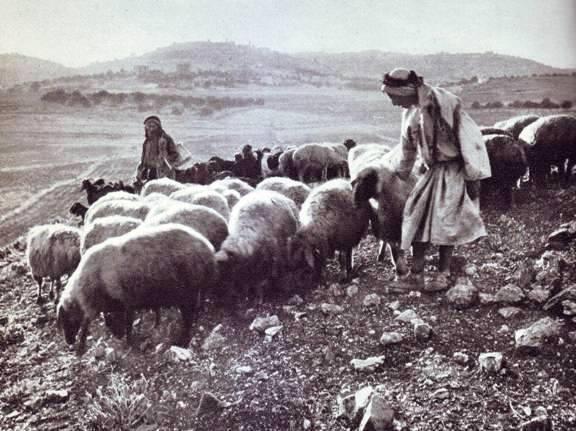 Bethlehem_shepherds